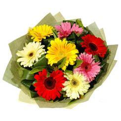 9 adet karisik gerbera demeti  Uşak çiçek mağazası , çiçekçi adresleri