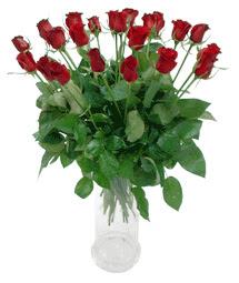 Uşak çiçekçi telefonları  11 adet kimizi gülün ihtisami cam yada mika vazo modeli