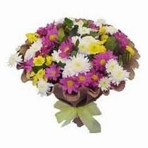 Uşak çiçekçi telefonları  Mevsim kir çiçegi demeti