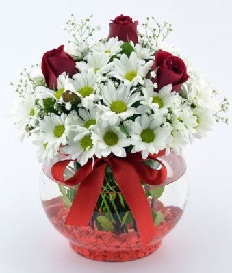 Fanusta 3 Gül ve Papatya  Uşak internetten çiçek satışı