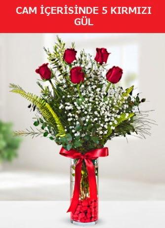 Cam içerisinde 5 adet kırmızı gül  Uşak çiçek siparişi sitesi