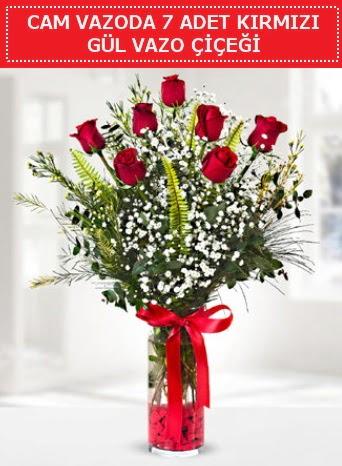 Cam vazoda 7 adet kırmızı gül çiçeği  Uşak çiçek gönderme sitemiz güvenlidir