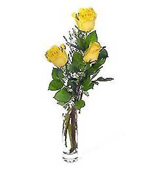 Uşak internetten çiçek siparişi  3 adet kalite cam yada mika vazo gül