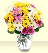 Uşak internetten çiçek siparişi  mevsim çiçekleri mika yada cam vazo