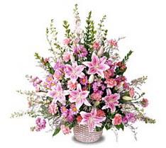 Uşak çiçek siparişi sitesi  Tanzim mevsim çiçeklerinden çiçek modeli