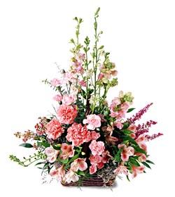 Uşak ucuz çiçek gönder  mevsim çiçeklerinden özel