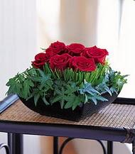 Uşak çiçek siparişi sitesi  10 adet kare mika yada cam vazoda gül tanzim