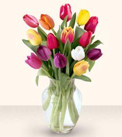 Uşak çiçekçiler  13 adet cam yada mika vazoda laleler