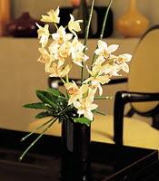 Uşak çiçekçiler  cam yada mika vazo içerisinde dal orkide