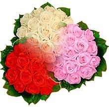 3 renkte gül seven sever   Uşak çiçek , çiçekçi , çiçekçilik