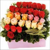 15 adet renkli gül ve cam   Uşak çiçekçi mağazası