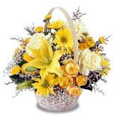 sadece sari çiçek sepeti   Uşak çiçek gönderme sitemiz güvenlidir