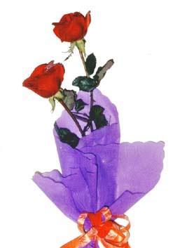 2  adet kirmizi gül buketi   Uşak çiçek , çiçekçi , çiçekçilik