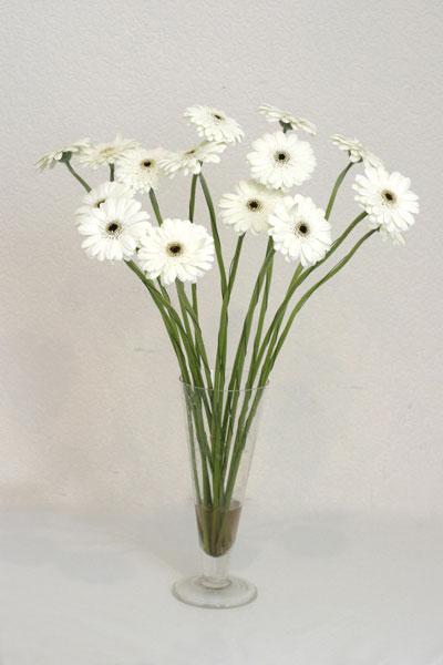 Uşak çiçek mağazası , çiçekçi adresleri  cam vazo içerisinde 17 adet sade gerbera