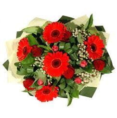Uşak ucuz çiçek gönder   5 adet kirmizi gül 5 adet gerbera demeti