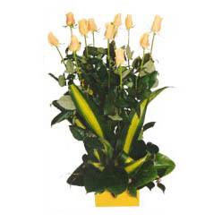 12 adet beyaz gül aranjmani  Uşak kaliteli taze ve ucuz çiçekler