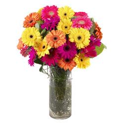 KARISIK GERBERALARDAN CAM VAZO TANZIMI  Uşak güvenli kaliteli hızlı çiçek
