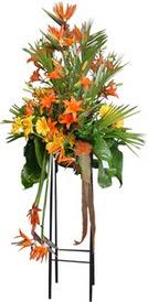 Uşak çiçek siparişi sitesi  perförje tanzimi dügün nikah ve açilislara