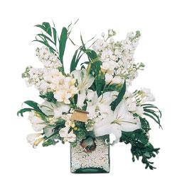 Uşak internetten çiçek siparişi  sadece beyazlardan olusmus mevsim cam yada mika tanzim