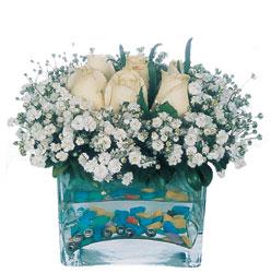 Uşak çiçekçi mağazası  mika yada cam içerisinde 7 adet beyaz gül