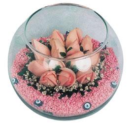 Uşak internetten çiçek satışı  cam fanus içerisinde 10 adet gül