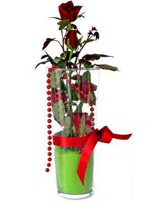 Uşak online çiçek gönderme sipariş  Cam yada mika içerisinde 9 adet kirmizi gül - sevdiklerinize özel