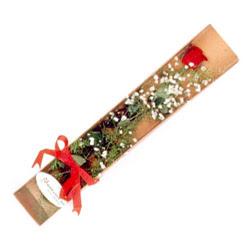 Uşak çiçek , çiçekçi , çiçekçilik  Kutuda tek 1 adet kirmizi gül çiçegi