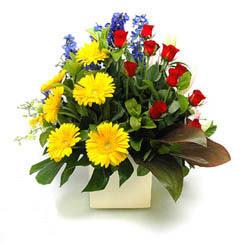Uşak online çiçek gönderme sipariş  9 adet gül ve kir çiçekleri cam yada mika vazoda