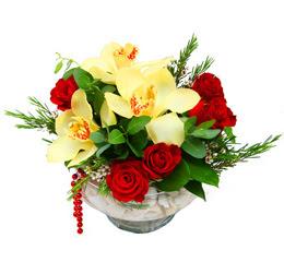 Uşak çiçek gönderme  1 kandil kazablanka ve 5 adet kirmizi gül
