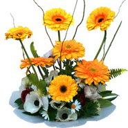 camda gerbera ve mis kokulu kir çiçekleri  Uşak çiçekçi telefonları