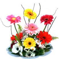 Uşak hediye çiçek yolla  camda gerbera ve mis kokulu kir çiçekleri