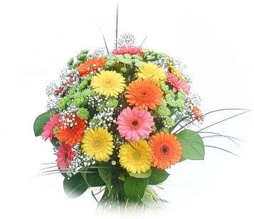 13 adet gerbera çiçegi buketi  Uşak online çiçek gönderme sipariş