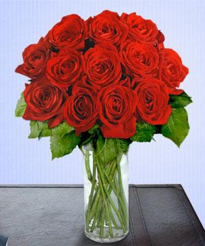 Anneme 12 adet cam içerisinde kirmizi gül  Uşak çiçek siparişi sitesi