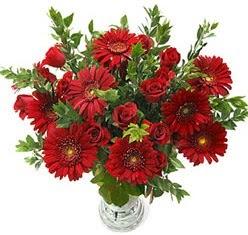 5 adet kirmizi gül 5 adet gerbera aranjmani  Uşak hediye çiçek yolla