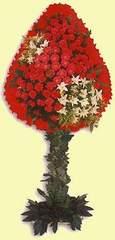 Uşak çiçek gönderme  dügün açilis çiçekleri  Uşak çiçek online çiçek siparişi