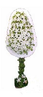 Uşak çiçek siparişi sitesi  nikah , dügün , açilis çiçek modeli  Uşak online çiçek gönderme sipariş
