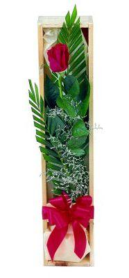 1 adet kutuda kirmizi gül  Uşak çiçek gönderme sitemiz güvenlidir
