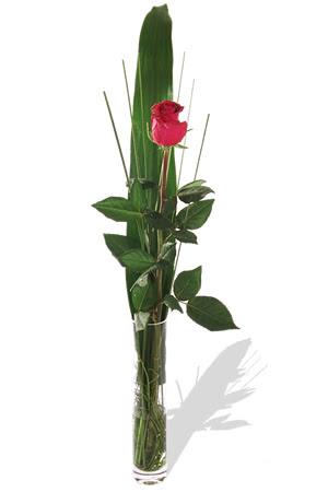 1 adet cam vazo içerisinde kirmizi gül  Uşak çiçek , çiçekçi , çiçekçilik