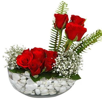cam içerisinde 9 adet kirmizi gül  Uşak çiçek siparişi vermek