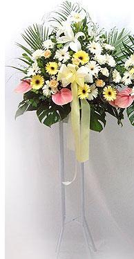 Uşak online çiçek gönderme sipariş   perförje çiçegi dügün çiçekleri