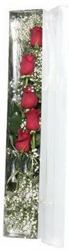 Uşak çiçek siparişi sitesi   5 adet gülden kutu güller