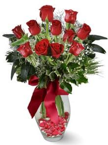 9 adet gül  Uşak internetten çiçek satışı  kirmizi gül