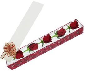 Uşak internetten çiçek satışı  kutu içerisinde 5 adet kirmizi gül