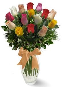 15 adet vazoda renkli gül  Uşak internetten çiçek satışı