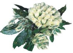 Uşak internetten çiçek siparişi  9 Beyaz gül Özel kisiler için