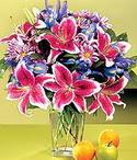 Uşak çiçek mağazası , çiçekçi adresleri  Sevgi bahçesi Özel  bir tercih