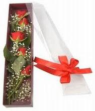 kutu içinde 5 adet kirmizi gül  Uşak internetten çiçek siparişi