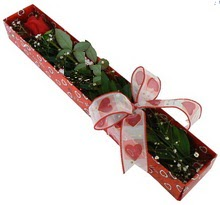 Tek kirmizi gül kutu içerisinde  Uşak güvenli kaliteli hızlı çiçek