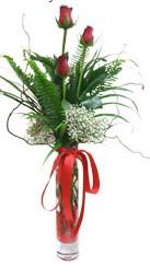 Uşak çiçek siparişi sitesi  3 adet kirmizi gül vazo içerisinde
