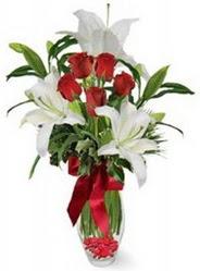 Uşak çiçek siparişi vermek  5 adet kirmizi gül ve 3 kandil kazablanka
